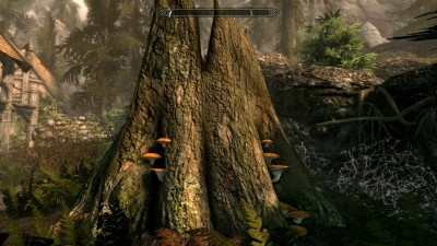 второй скриншот из Skyrim: Cheap but Good (SE)