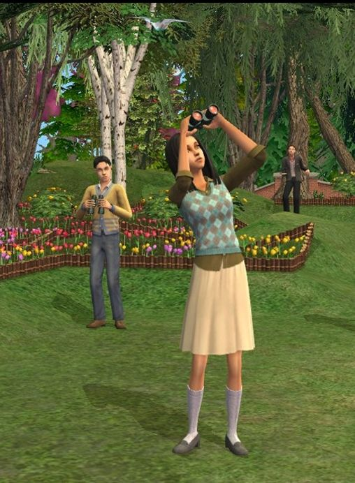 Обложка The Sims 2 Mod Pack
